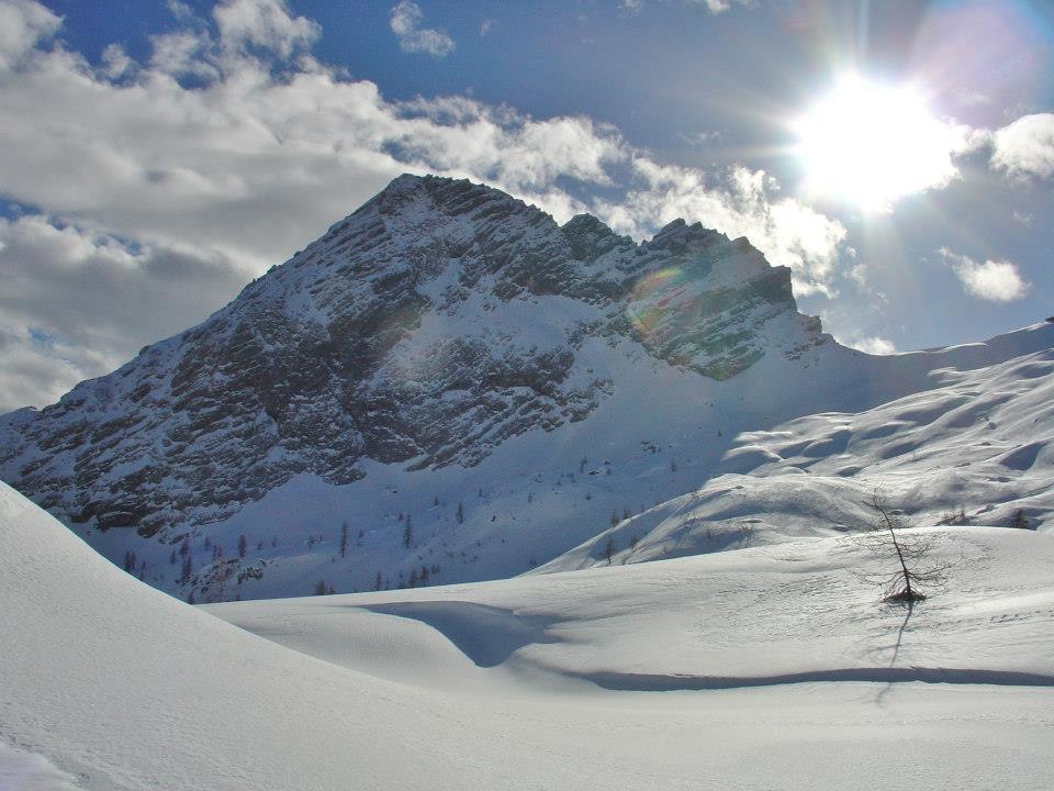 Passauer winterbild 1