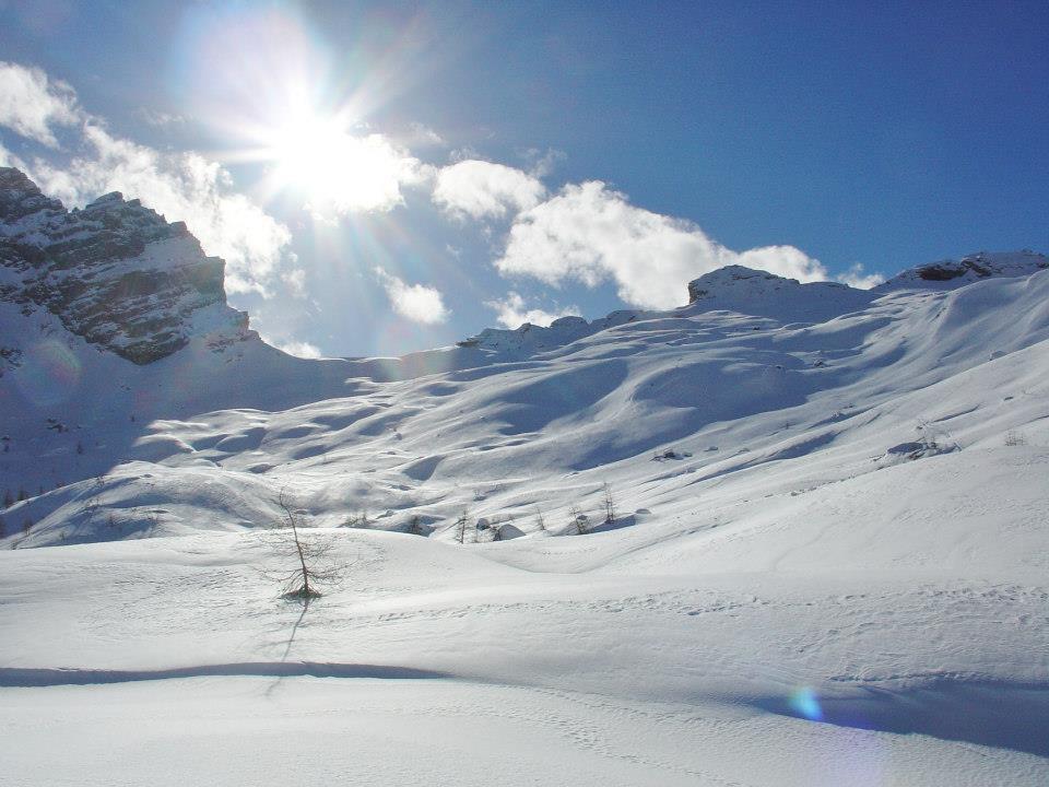 Passauer winterbild 6
